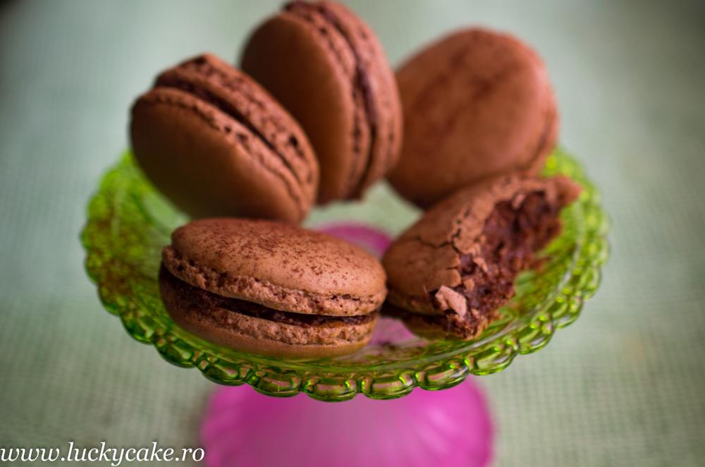 Macarons Cacao si Crema Gianduia